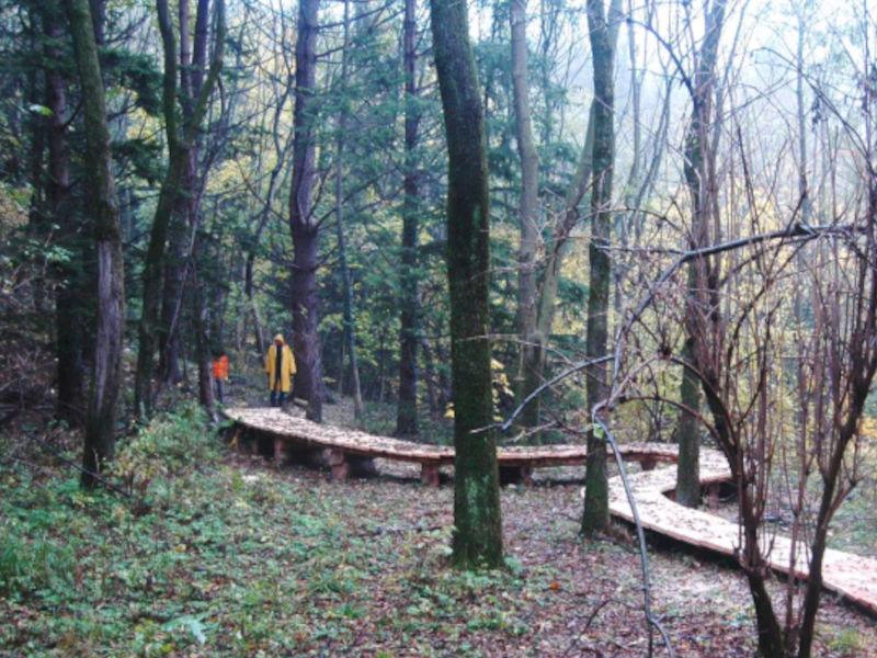 Rapporto della fruizione turistica nelle Foreste di Lombardia – Anno 2020